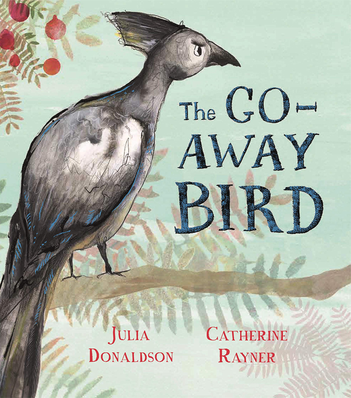Review: The Go-Away Bird by Julia Donaldson – Books on the ...