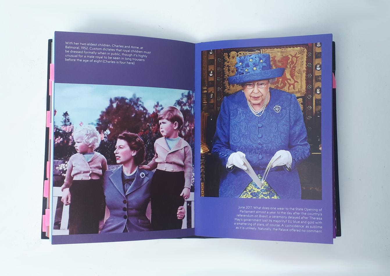 the-queen-eu-book-review