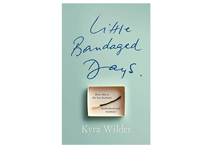 Little Bandaged Days Kyra Wilder Book Review