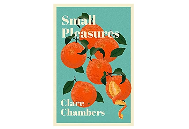 Small Pleasures Clare Chambers book review